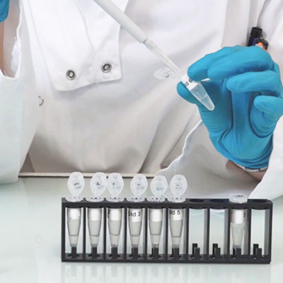 3' video to set up your Phospho assay