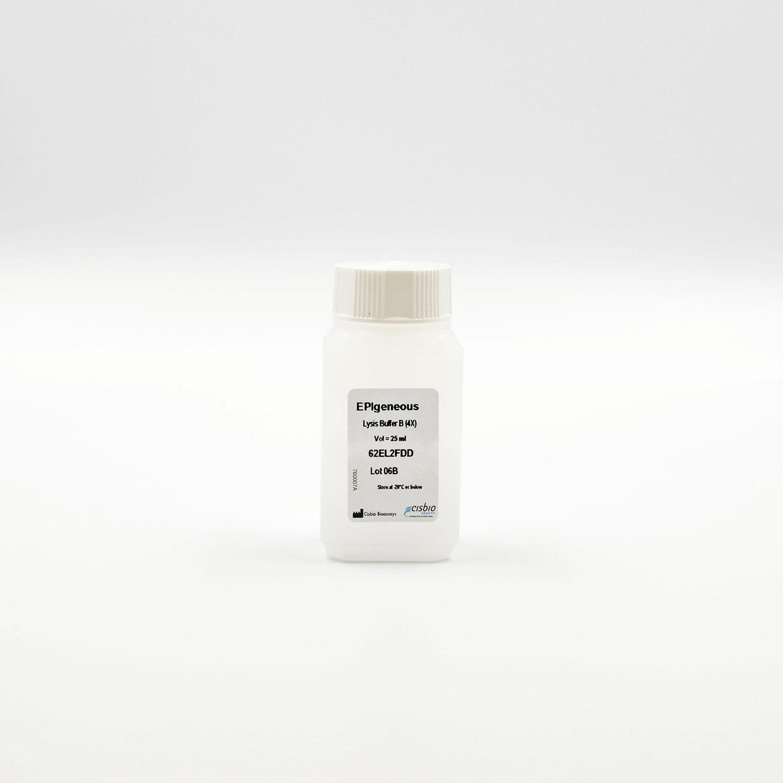 EPIgeneous lysis buffer B vial