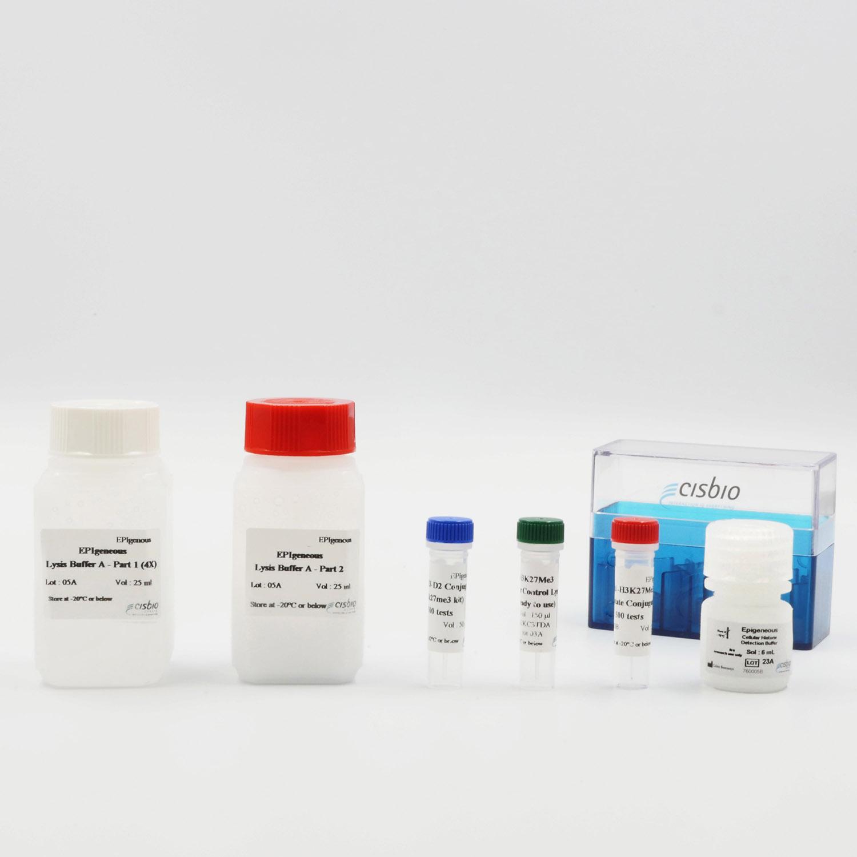 EPIgeneous H3K27Me3 cellular kit components