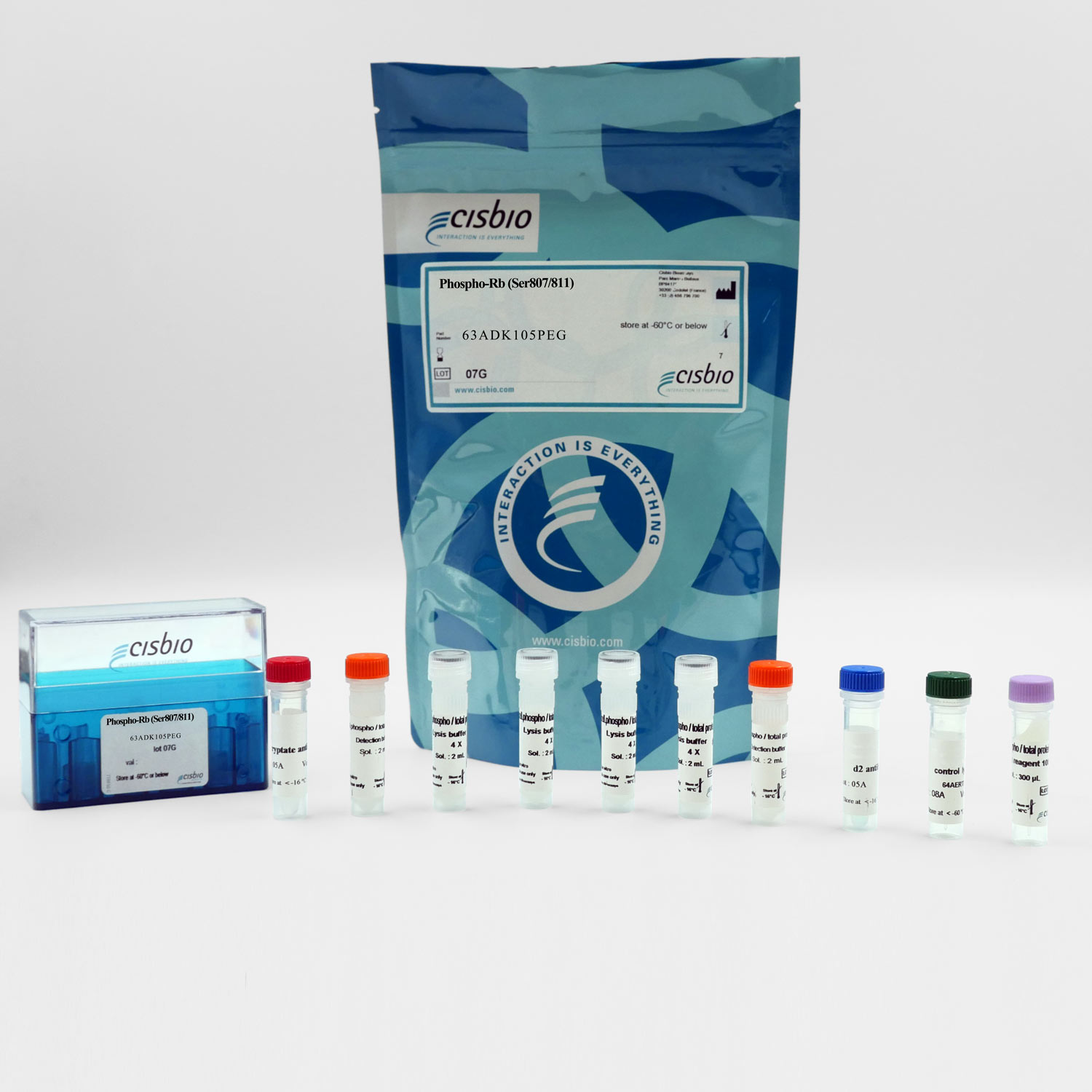 Photography of Phospho Rb Ser807-811 Kit and components
