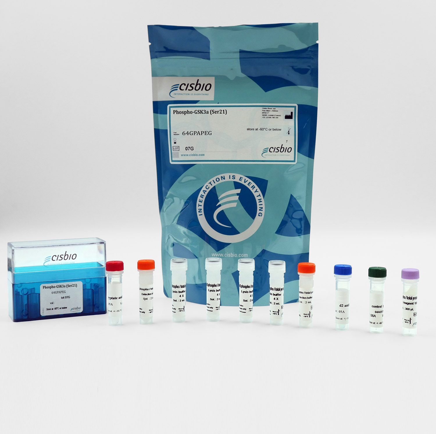 Phospho-GSK3 alpha (Ser21) cellular kit I Cisbio