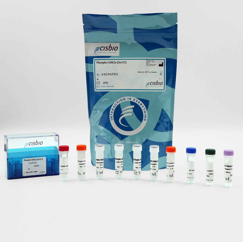 Phospho-GSK3 alpha (Ser21) cellular kit I Cisbio