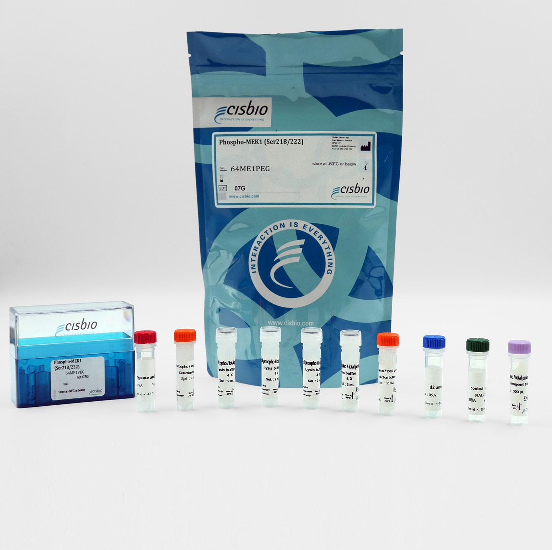 Phospho-MEK1 (Ser218/222) cellular kit