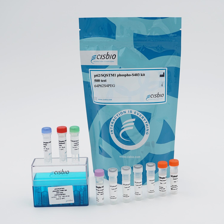 Picture of the HTRF phospho-p62 SQSTM1 Ser403 cellular kit