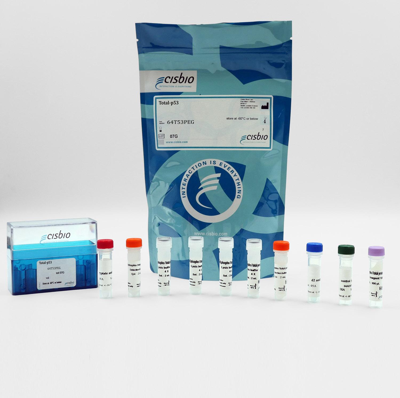 Total p53 cellular kit