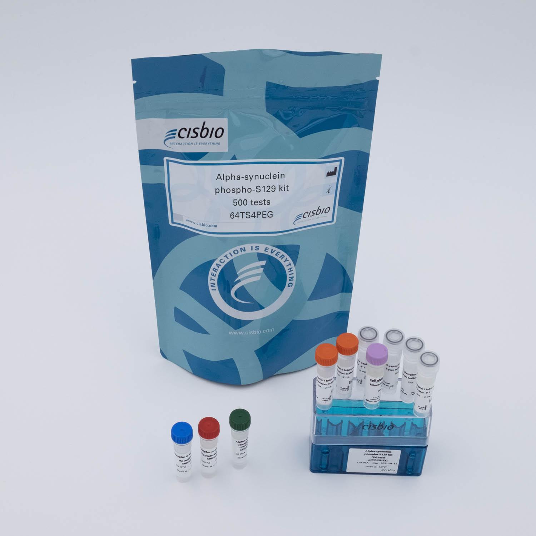 Photography of phospho alpha-synuclein S129 kit
