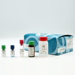 HTRF KinEASE-STK S1 kit