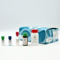 HTRF KinEASE-STK S3 kit