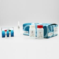 Terbium cryptate Labeling kit