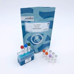 Total IRAK4 cellular kit