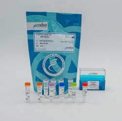 Total-FGFR3 cellular kit