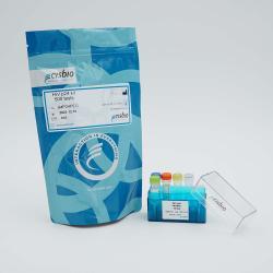 HIV p24 Detection Kit