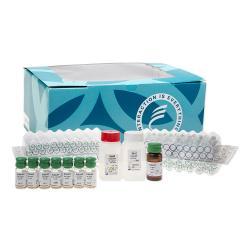 Whole corticotropic hormone immunoradiometric assay kit