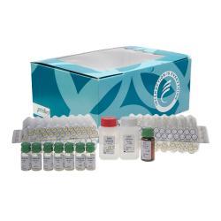 TAG 72 antigen (CA 72-4) immunoradiometric assay kit