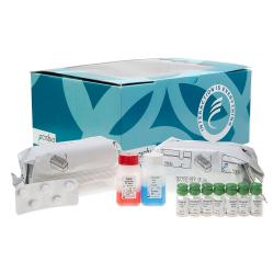 Alpha-fetoprotein (AFP) immunoradiometric assay kit