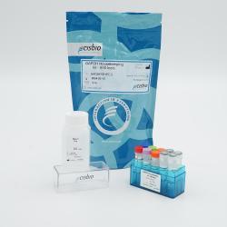 GAPDH Housekeeping Cellular Kit
