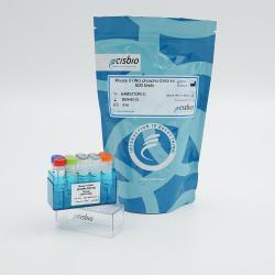 Mouse Phospho-STING (Ser365) Cellular Kit