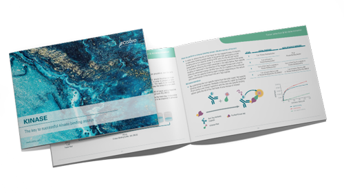 Download the ultimate guide to successful kinase binding experiments